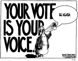 vote voice